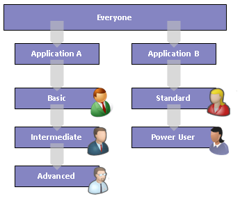 Example of a Type IV Security Model where each application defines their own functional groups
